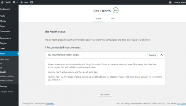 WordPress 5.2 site health check screen shot